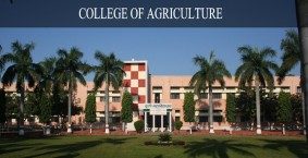 Govind Ballabh Pant University of Agriculture and Te...