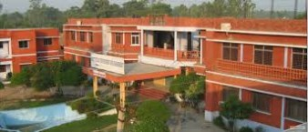 Institute of Environment and Management